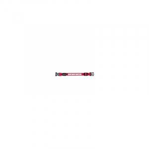 USB Flash halsbånd M-L 40-50 cm./25 mm. rød