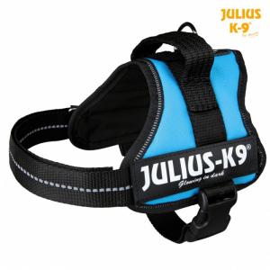 Julius K9 powersele Mini /M 51-67 cm. Aquamarine