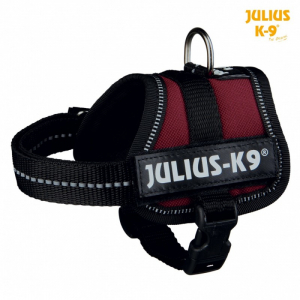 Julius K9 powersele Baby 1/XS 30-40 cm. Bordeaux