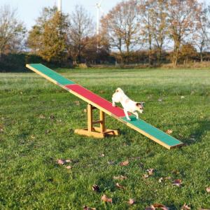Agility vippe til hund. Vandfast. 300×54×34 cm op til 80 kg.