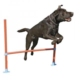 AGILITY HOP FORHINDRING STANG. Lavet i lette materialer, så hunden ikke kommer til skade
