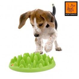 Green Mini Northmate. Grøn. Aktivitetslegetøj og foderskål. Passer til hvalpe samt mindre hunde op til 7-9 kg.