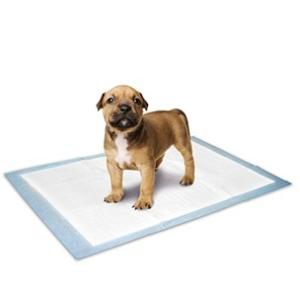 Karlie Puppy training mat